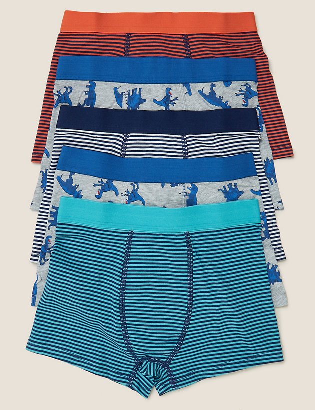 5 Pack Cotton with Stretch Dinosaur Trunks