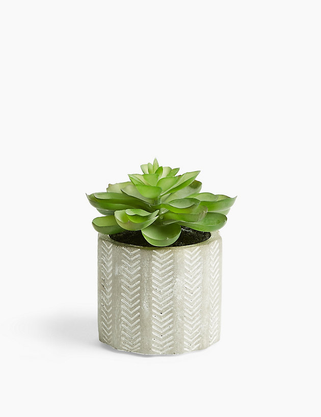 Artificial Mini Echeveria in Concrete Pot